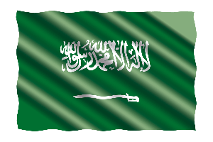 Visa Saudi Arabia Online | Official Electronic visa for Arabia Saudi